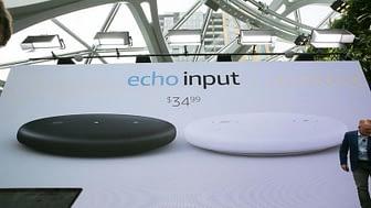 Oferta amazon Echo Input