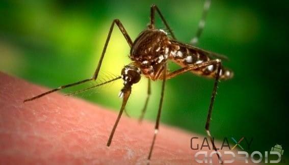 Por que nos muerden los mosquitos portada
